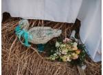 Свадьба, 2017