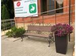 Озеленение городских объектов
