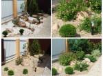 Фактор времени в саду